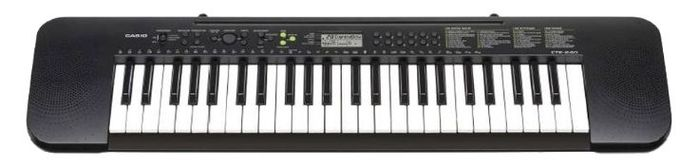 CASIO CTK 245